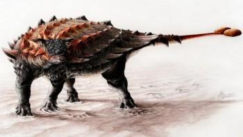 Новые броненосные виды динозавров найдены в Нью-Мексико