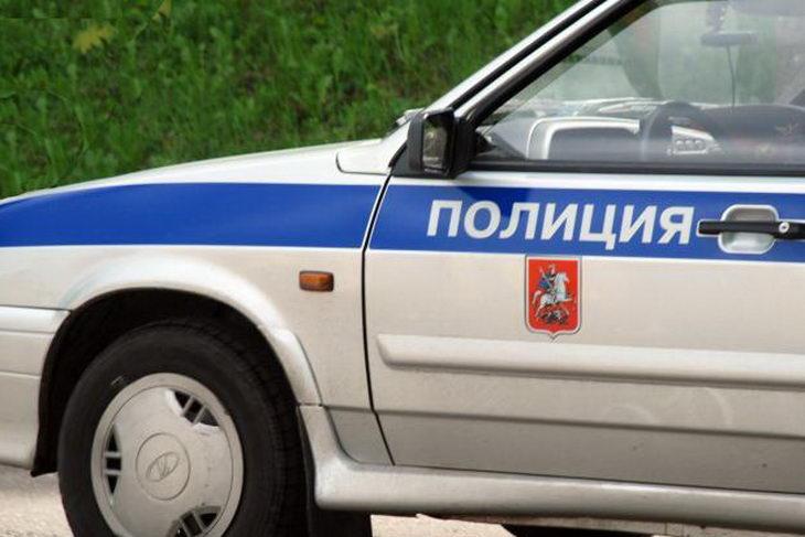 policiya-massovaya-draka-sadovod